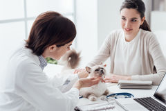 Κτηνίατρος που επισκέπτεται ένα κατοικίδιο ζώο Στοκ εικόνα με δικαίωμα ελεύθερης χρήσης