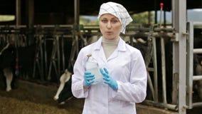 Κτηνίατρος που στέκεται κοντά στις αγελάδες φιλμ μικρού μήκους