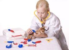κτηνίατρος τσιμπιδακιών κ& Στοκ Φωτογραφία