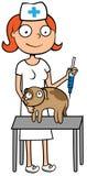 Κτηνιατρική γιατρός ή νοσοκόμα κτηνιάτρων προσοχής Στοκ Εικόνες