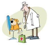 κτηνιατρικός Στοκ εικόνα με δικαίωμα ελεύθερης χρήσης