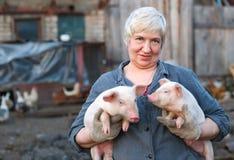 Κτηνοτροφική παραγωγή Στοκ Φωτογραφίες