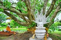 Κτύπημα Khen Si Mahathat Phra Wat Στοκ φωτογραφία με δικαίωμα ελεύθερης χρήσης