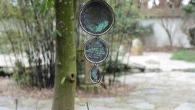 Κτύπος κήπων της Zen απόθεμα βίντεο