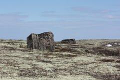 Κυβική πέτρα tundra στοκ εικόνες
