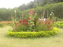 Κυκλικός διαμορφωμένος κήπος στοκ φωτογραφία με δικαίωμα ελεύθερης χρήσης