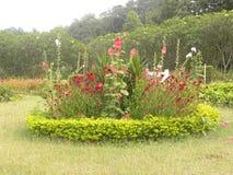 Κυκλικός κήπος μορφής στοκ εικόνες