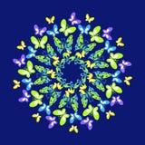 Κυκλικό σχέδιο μιας πεταλούδας Στεφάνι του πολύχρωμου butterf Στοκ φωτογραφία με δικαίωμα ελεύθερης χρήσης