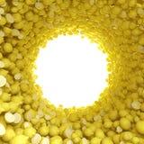 Κυκλική σήραγγα των κίτρινων λεμονιών Στοκ Φωτογραφίες