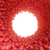 Κυκλική σήραγγα των κόκκινων ντοματών Στοκ εικόνα με δικαίωμα ελεύθερης χρήσης