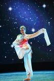 Κυκλικός ανεμιστήρας-κλασσικός χορός στοκ φωτογραφίες