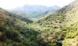 Κυλώντας λόφοι και λιβάδια στοκ εικόνες