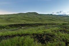 Κυλώντας λόφοι που καλύπτονται με την πράσινη χλόη μεγάλο νησί της Χαβάης στοκ εικόνα με δικαίωμα ελεύθερης χρήσης