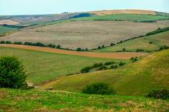 Κυλώντας λόφοι του Σάσσεξ στοκ εικόνες