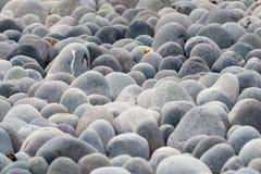 κυλώντας πέτρα Στοκ Φωτογραφία