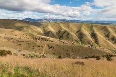 Κυλώντας τοπίο λόφων Wither στο πάρκο λόφων σε Blenheim, Νέα Ζηλανδία στοκ εικόνες
