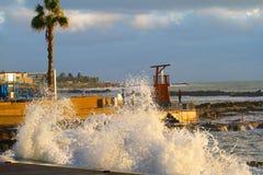 Κυμάτων θερινός φοίνικας παραλιών περιπάτων θάλασσας θύελλας καταβρέχοντας στοκ φωτογραφίες