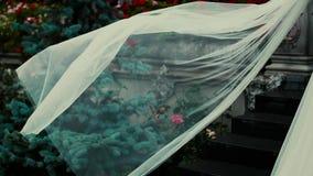 Κυματίζοντας πέπλο νυφών σε αργή κίνηση στη θερινή ημέρα Νέα νύφη που μένει κυματίζοντας πέπλο απόθεμα βίντεο