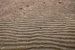 Κυματισμένη άμμος στην παράκτια παραλία Στοκ εικόνες με δικαίωμα ελεύθερης χρήσης