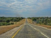 Κυματιστός δρόμος στη Ναμίμπια στοκ εικόνα