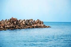 Κυματοθραύστης θάλασσας Quoc Phu στοκ φωτογραφία