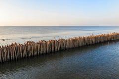 Κυματοθραύστης μπαμπού στη θάλασσα της Μπανγκόκ Ταϊλάνδη Στοκ Φωτογραφίες