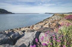 Κυματοθραύστης Stonebuilt σε Fishguard, Pembrokeshire στοκ εικόνες