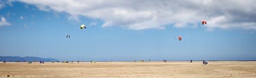 Κυματωγή ικτίνων σε Fuerteventura Στοκ Φωτογραφία