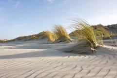 Κυματώσεις άμμου στους αμμόλοφους Στοκ Φωτογραφία