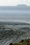 Κυματώσεις λάσπης & απότομη ακροποταμιά Στοκ Εικόνες