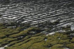 Κυματώσεις λάσπης Στοκ Εικόνα