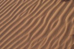 κυματώσεις namiba αμμόλοφων Στοκ Φωτογραφία