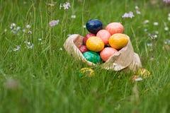 κυνήγι αυγών Πάσχας Στοκ Εικόνες