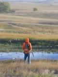 Κυνήγι πουλιών Στοκ Εικόνες