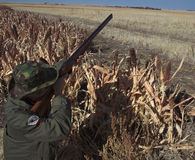 κυνηγετικό όπλο κυνηγών π&eps Στοκ εικόνες με δικαίωμα ελεύθερης χρήσης