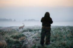 Κυνηγός που κρατά ένα τουφέκι και που στοχεύει τα κόκκινα ελάφια, κυνηγών Στοκ Εικόνες