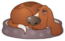 κυνηγόσκυλο σκυλιών νυσταλέο απεικόνιση αποθεμάτων
