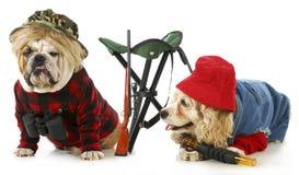 Κυνηγώντας σκυλιά Στοκ φωτογραφίες με δικαίωμα ελεύθερης χρήσης