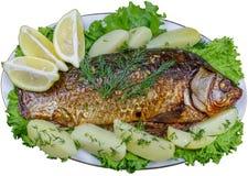 Κυπρίνος που μαγειρεύεται στο φούρνο με τις πατάτες και το λεμόνι Στοκ εικόνες με δικαίωμα ελεύθερης χρήσης