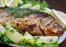 Κυπρίνος που μαγειρεύεται στο φούρνο με τις πατάτες και το λεμόνι Στοκ Εικόνες