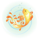 κυπρίνος goldfish Στοκ Φωτογραφίες
