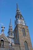 κυρία καθεδρικών ναών notre Στοκ φωτογραφία με δικαίωμα ελεύθερης χρήσης