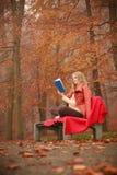 Κυρία που διαβάζει το μπλε βιβλίο Στοκ Εικόνες