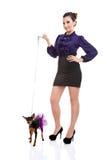 κυρία σκυλιών προκλητική Στοκ εικόνες με δικαίωμα ελεύθερης χρήσης