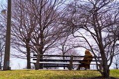 Κυρία στον πάγκο πάρκων το χειμώνα Στοκ φωτογραφία με δικαίωμα ελεύθερης χρήσης