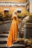 Κυρία στο μεσαιωνικό κοστούμι Στοκ εικόνες με δικαίωμα ελεύθερης χρήσης