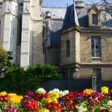 κυρία de Γαλλία notre Παρίσι Στοκ Εικόνα