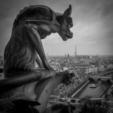 κυρία de notre Παρίσι Στοκ Εικόνες