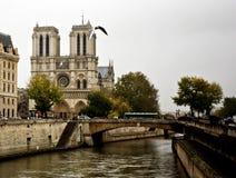 κυρία notre Παρίσι Στοκ Φωτογραφίες