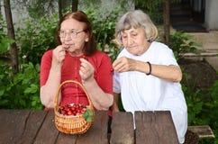 κυρίες γηραιές Στοκ Εικόνα
